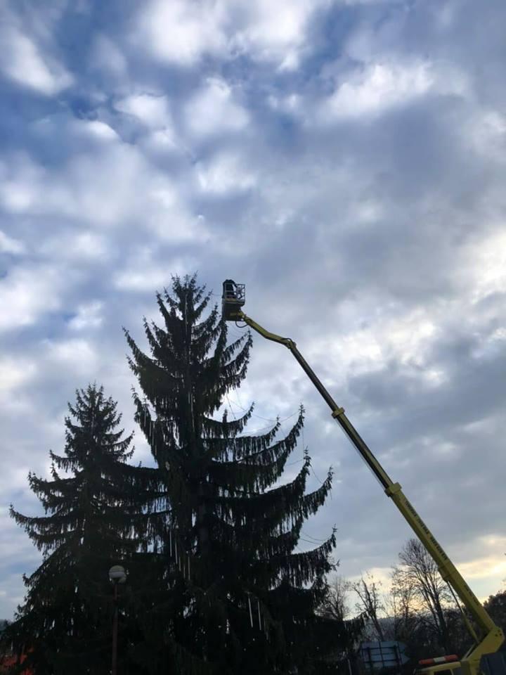 25 метровата вишка с която украсяваха Коледната елха в Троян
